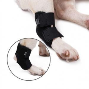강아지 애견 슬개골탈구 관절 보호대 노령견 무릎 신축성 방수성 보호대