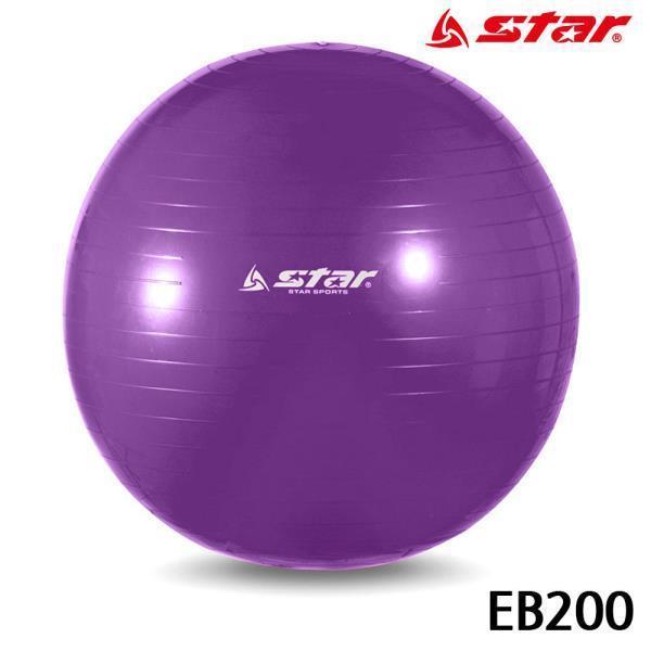 짐볼 (보라) (EB200)