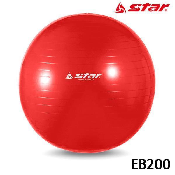 짐볼 (빨강) (EB200)