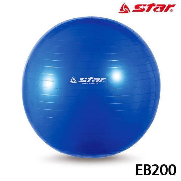 짐볼 (파랑) (EB200)