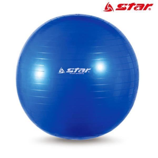 짐볼 55cm (블루) (EB240-07)