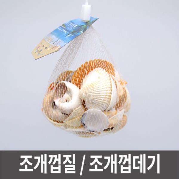 조개껍질 조개껍데기 만들기조개 조개껍질모음