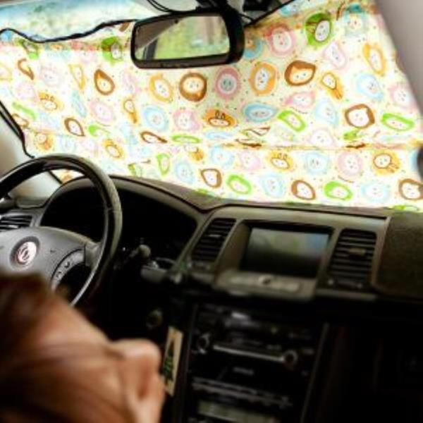 자동차 앞.뒤 창문가리개  애니멀 1p