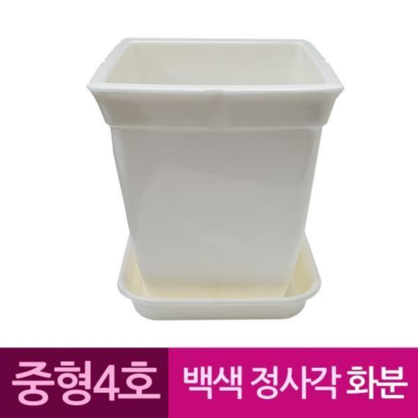 정사각 백색 도자기느낌 플라스틱화분 4호