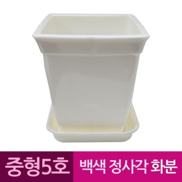 정사각 백색 도자기느낌 플라스틱화분 5호