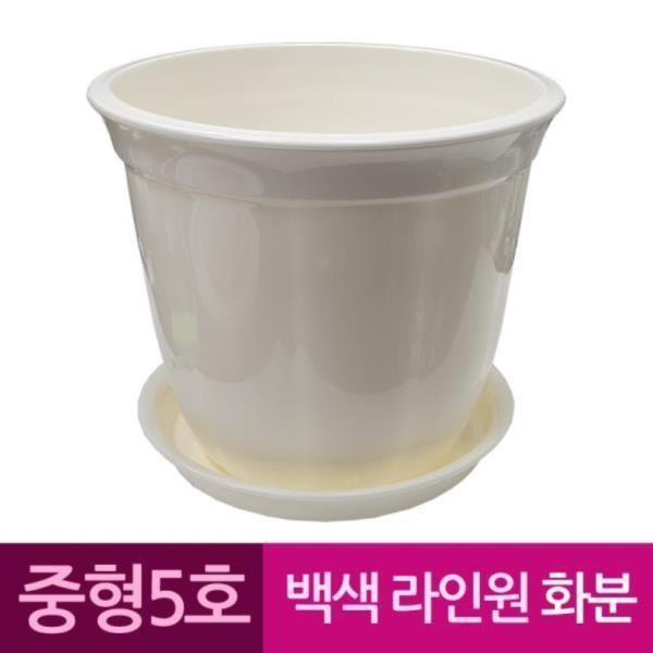 라인원형 백색 도자기느낌 플라스틱화분 5호