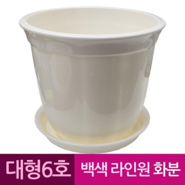 라인원형 백색 도자기느낌 플라스틱화분 6호