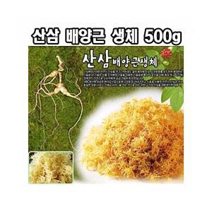 한국농업 산삼배양근생체 500g