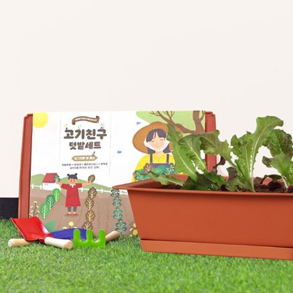 화분 키우기쉬운식물 베란다텃밭 화분 쌈채소 재배세트