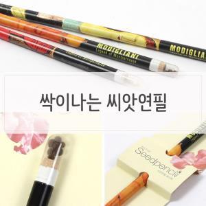 재미있는 싹이나는 씨앗연필