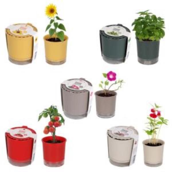 실내식물 화분만들기 세트
