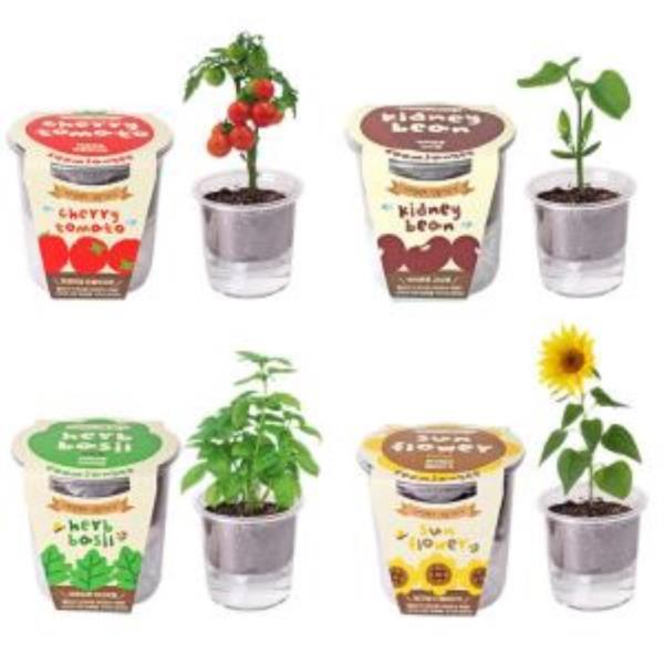 집에서할수있는취미 식물재배기 키트