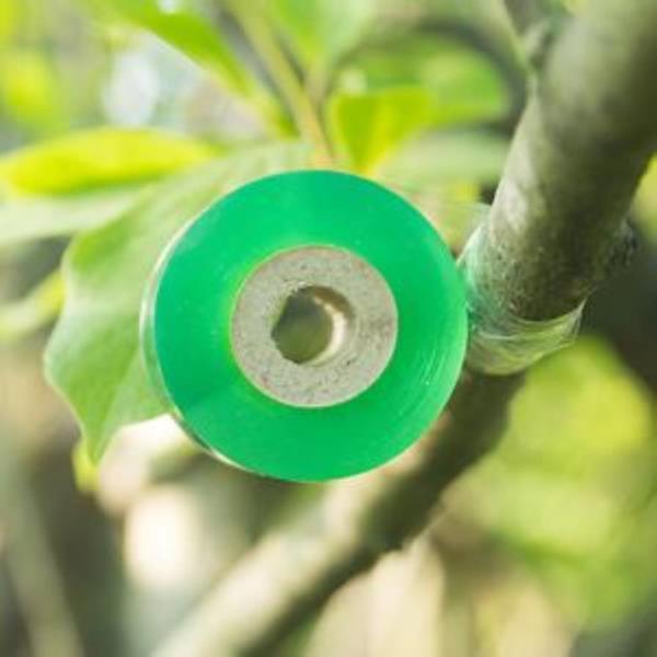 영농사 원예용 접목용 접목테이프 30mm DD-10722