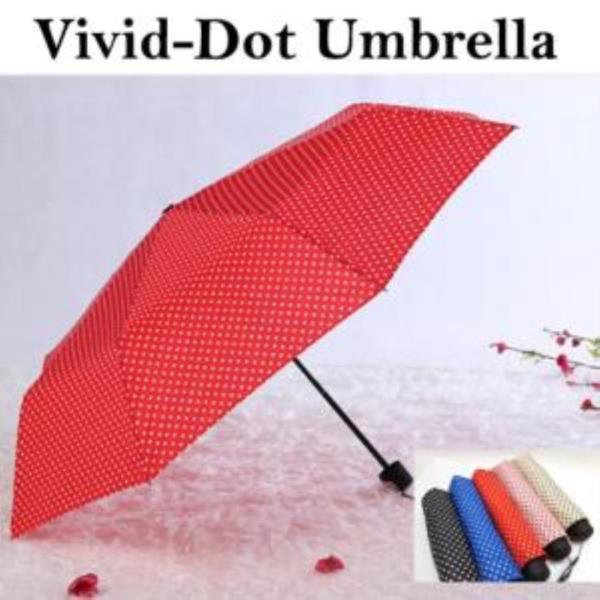 비비드도트 4단 우산 4종 (8k)
