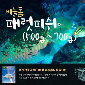 자연산 비늘돔 패럿피쉬 1마리손질냉동생선