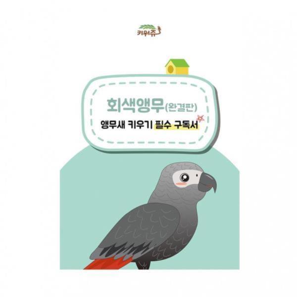 키워쥬 회색앵무(완결판) 앵무새 키우기 필수 구독서