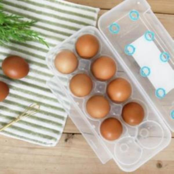 씨밀렉스 계란트레이 계란케이스 에그트레이 10구