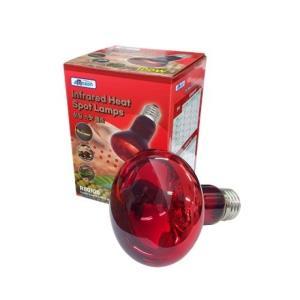 아마존 히팅 스팟 램프 100W(R80100)