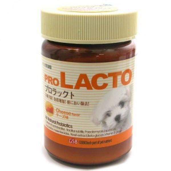프로락토(장기능개선/치즈맛) 120g