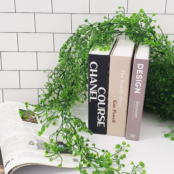컬러 등나무 대형 초록
