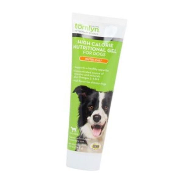 오메가3 연어오일 함유 비타민 미네랄 보충 영양제 톰린 뉴트리칼 120.5g  강아지영양제