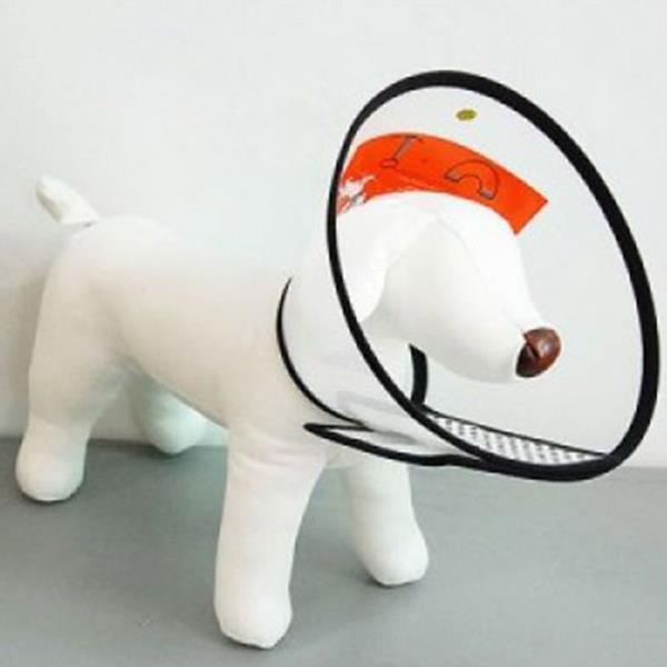 강아지 넥카라 고양이 깔대기 애견 목보호대 미니