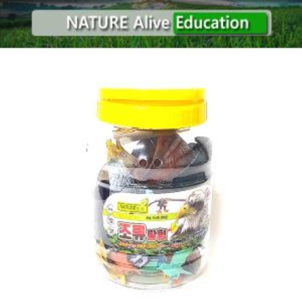 조류탐험(중) 자연은살아있다 학습용완구 교육용완구